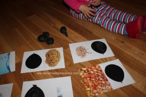 juegos discriminación sensorial