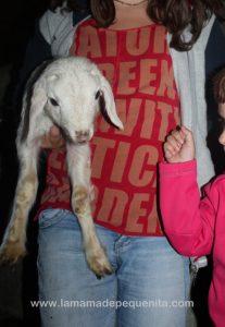 animales de la granja con niños